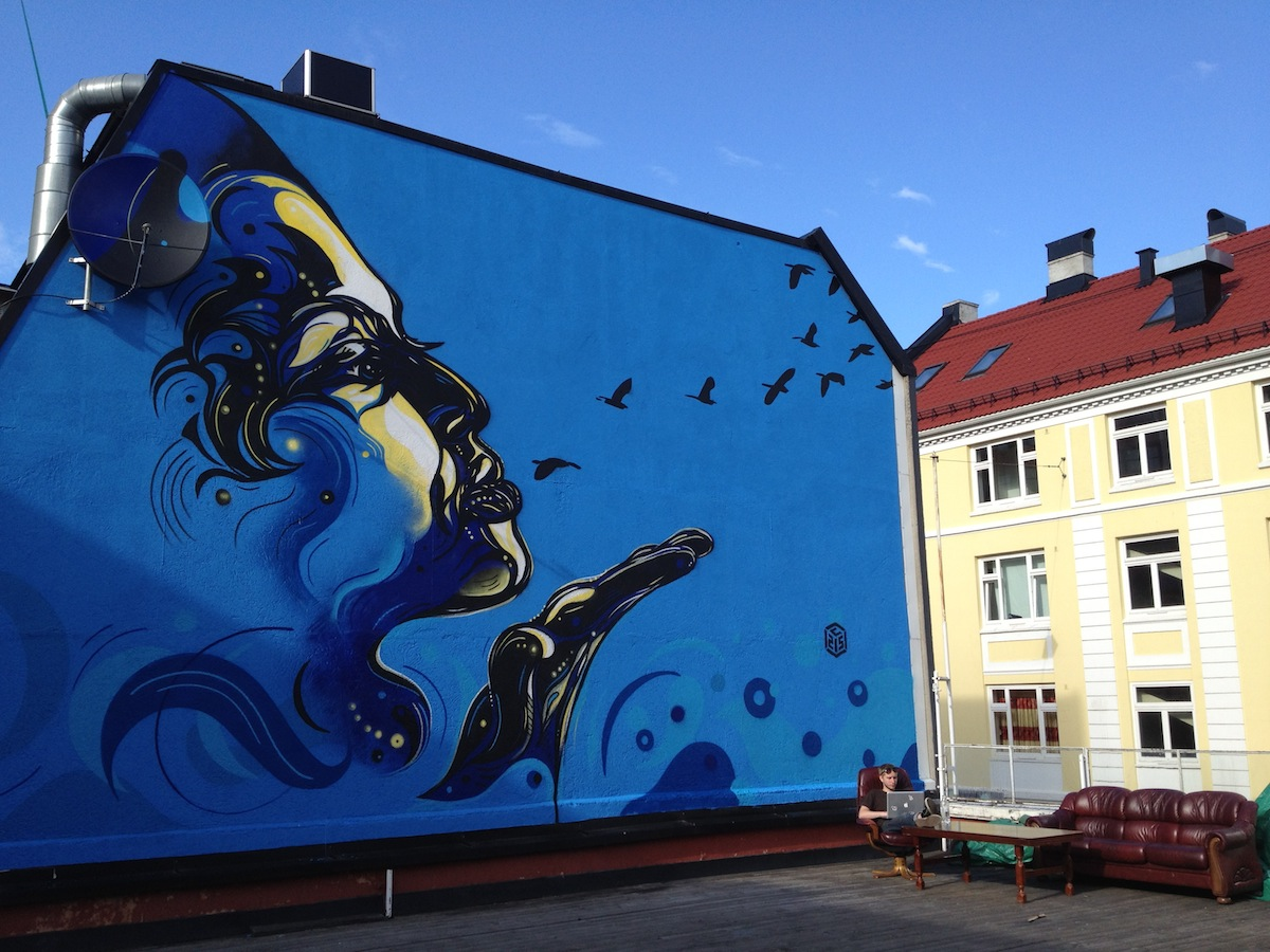 http://www.thevandallist.com/wp-content/uploads/2013/12/Street-Art-by-c215-in-Oslo-Norway.jpg