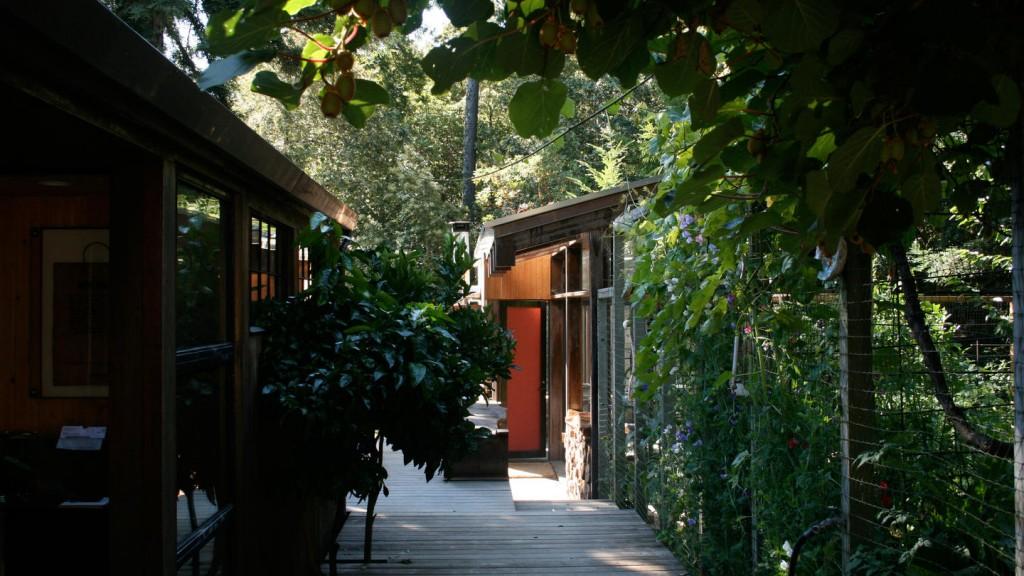 Lundberg Cabin 11_0
