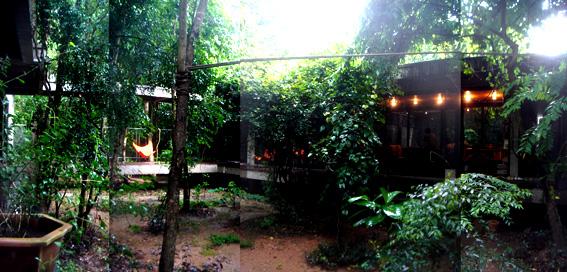 openhouse-barcelona-shop-gallery-forrest-art-architecture-rirkrit-tiravanija-aroon-puritat-chiang-mai-thailand-14