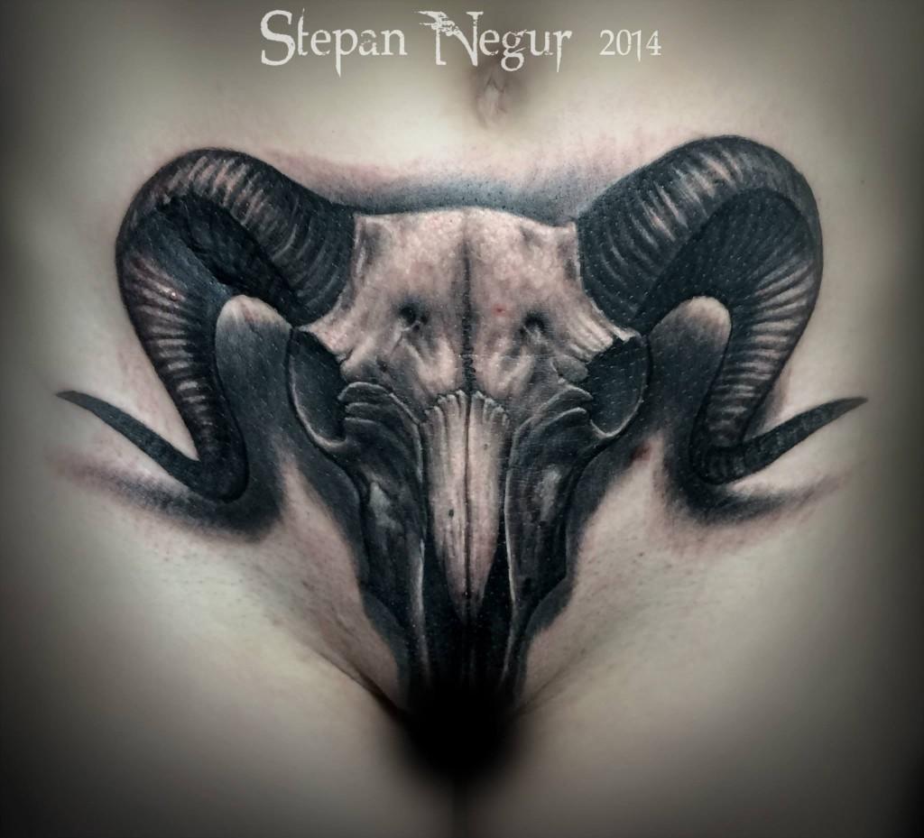 Stepan Negur - vlist (15)