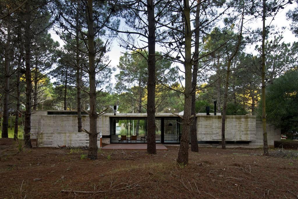 sv-house-luciano-kruk-arquitectos (7)